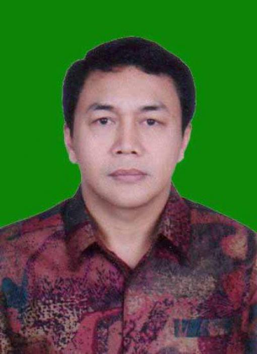 Arvin Hakim Thoha